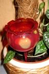 Teelichtkelche